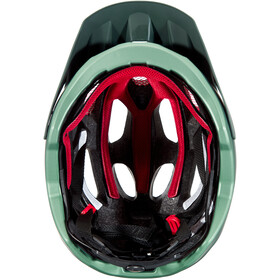Alpina Carapax 2.0 Helmet seamoss